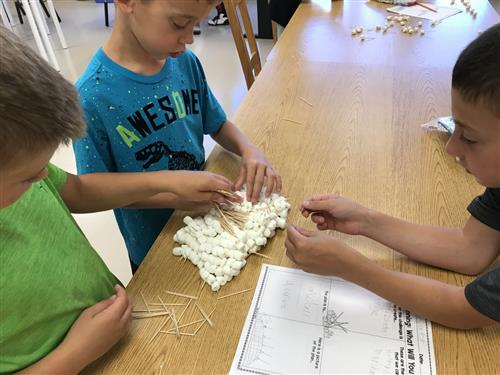 Students working together to design a bridge