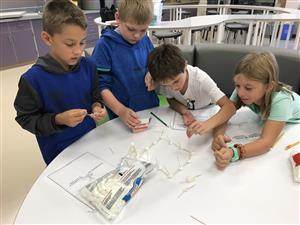 Students designing project with toothpicks and marshmallows